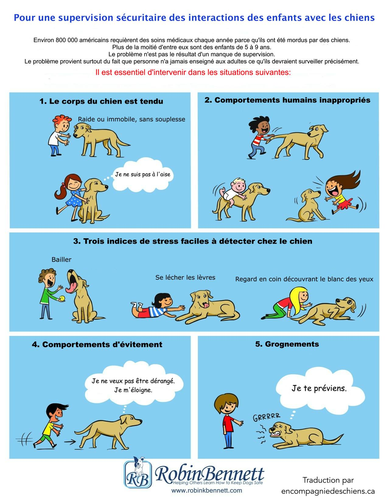 L'enfant et le chien: morsures Chien-et-enfant-officiel
